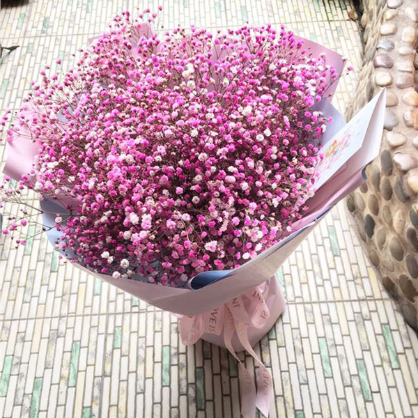Medium bouquet of pink-dyed baby's breath flowers wrapped in quality matte paper