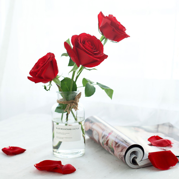 Large bouquet of 108 premium red roses wrapped in quality matte paper