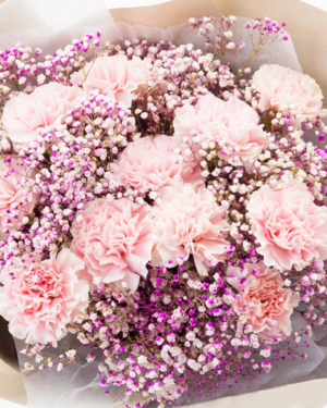 Medium bouquet of 12 pink carnations and baby's breath flowers